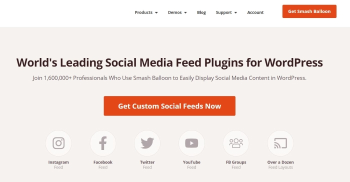 Smash Balloon is one of the best WordPress plugins for displaying social media feeds on your site.